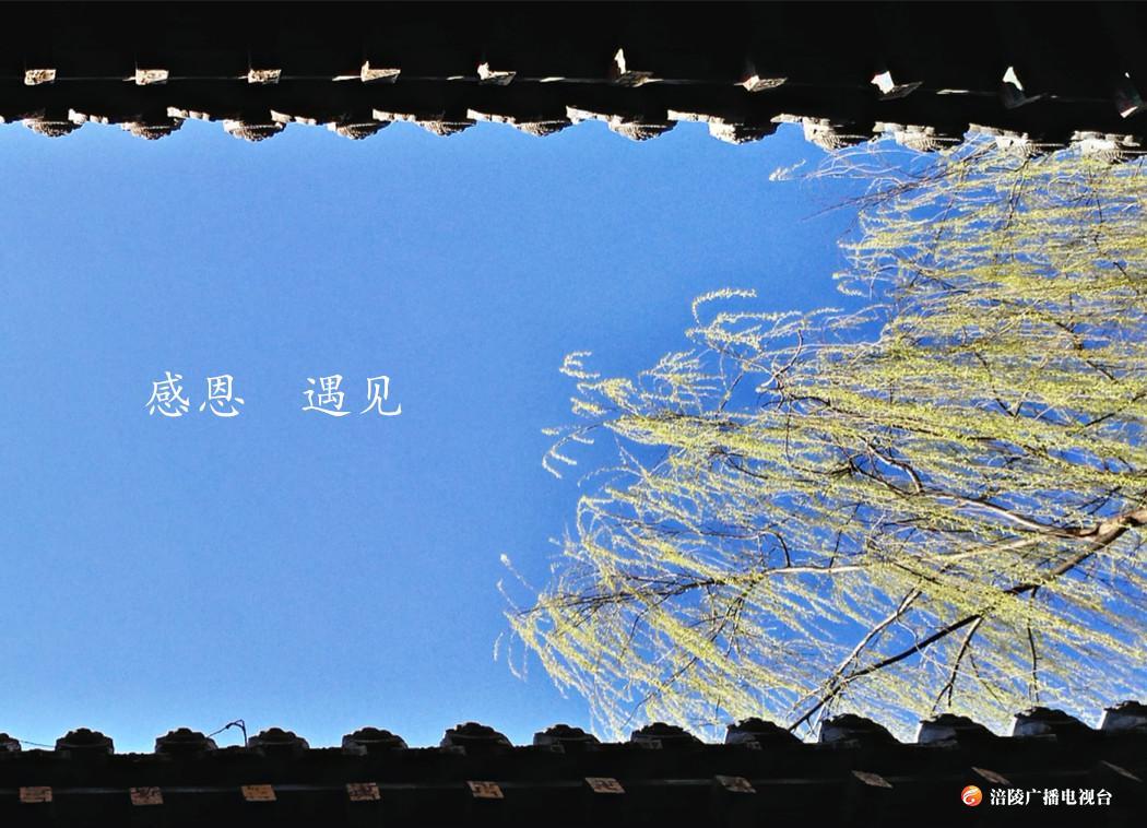 《江城悦读会》第三十七期节目:年末岁尾,感恩一路同行的所有人