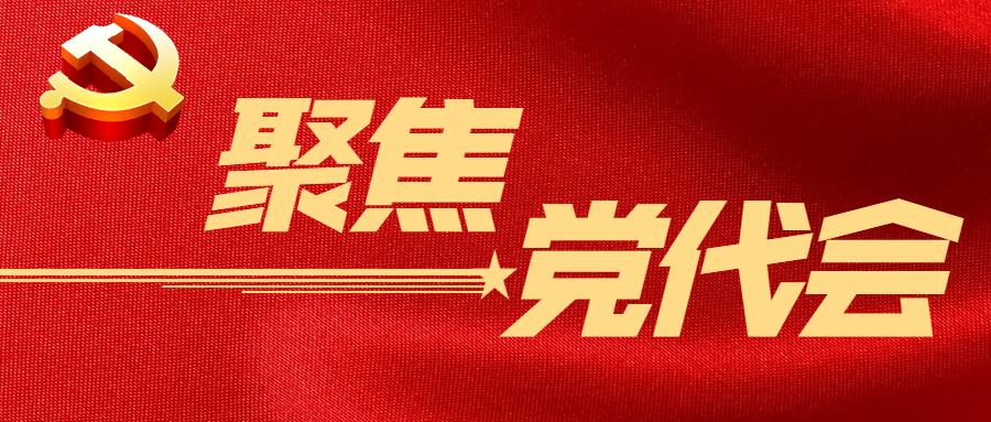 聚焦党代会 logo